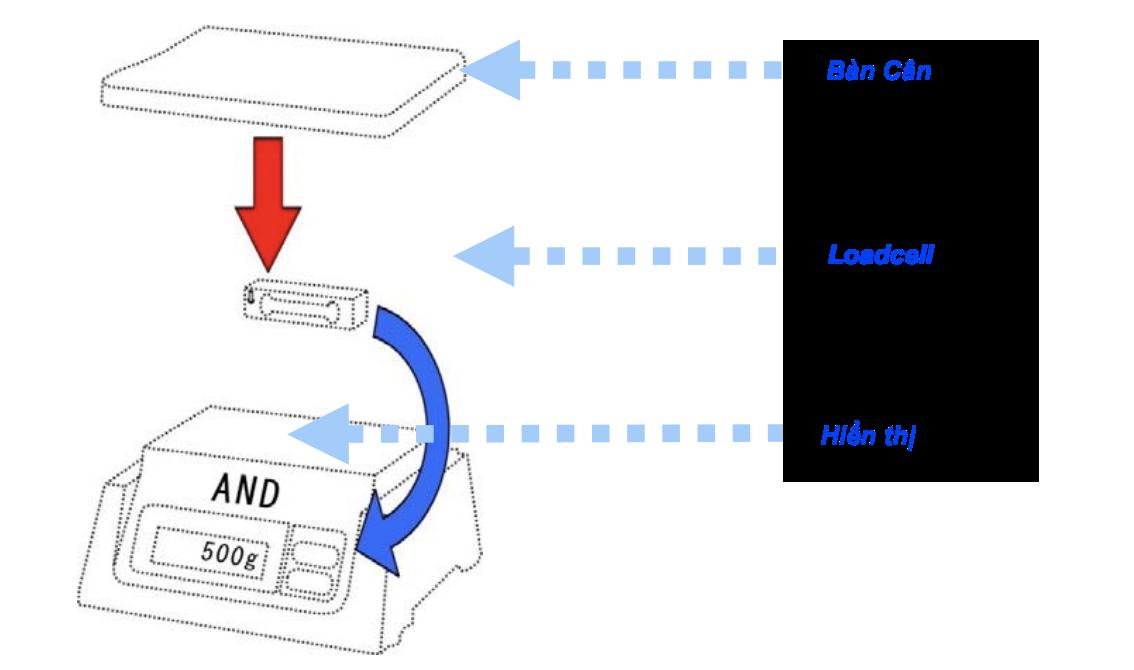 cách dùng loadcell